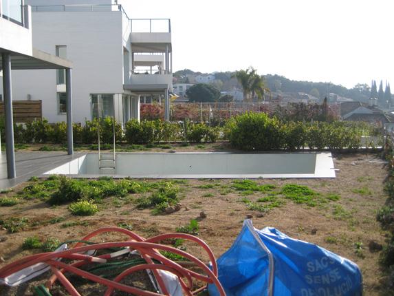 paisajismo en jardín con piscina